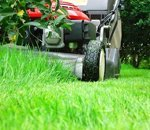 Calendar of sowing and lawn mowing