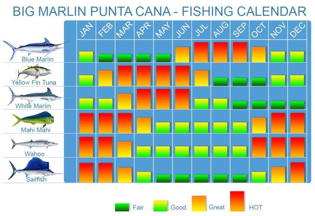 Fisherman S Calendar For 2019 Year 1