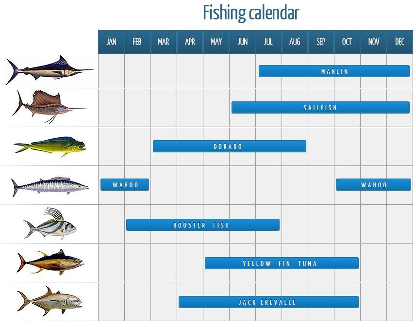 Fisherman S Calendar For 2019 Year 4 The Following Lunar Fishing