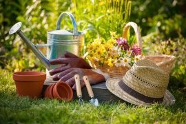 The sowing lunar calendar of the gardener and gardener at july 2020 year